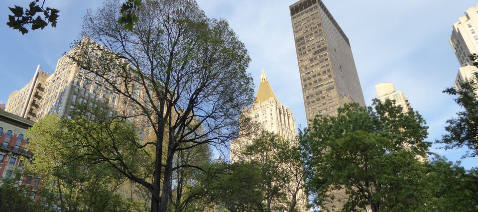 New-York City, Madison Square Park, Flatiron - Mai 2017.